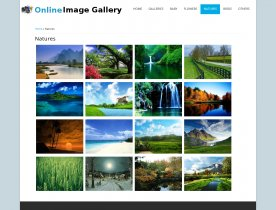 PHP Project on Online Image Gallery with MySQL Database.