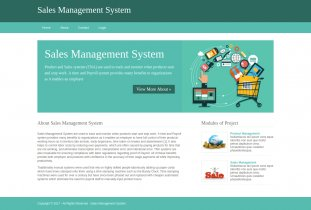 Python, Django and MySQL Project on Sales Management System
