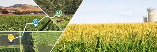 Java, JSP and MySQL Project on Farm Management System